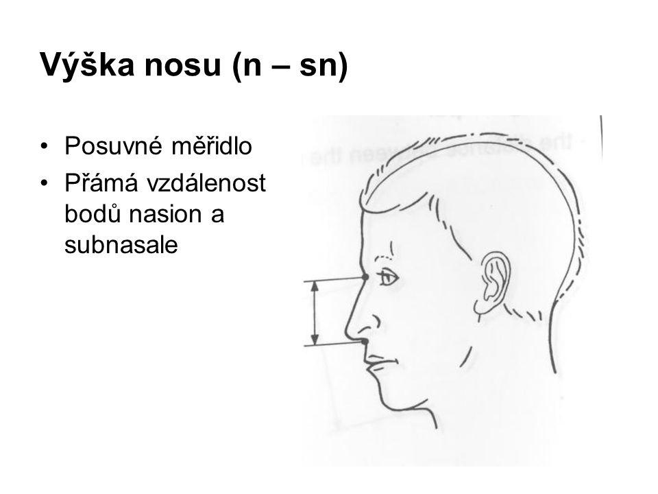 Výška nosu (n – sn) Posuvné měřidlo Přámá vzdálenost bodů nasion a subnasale