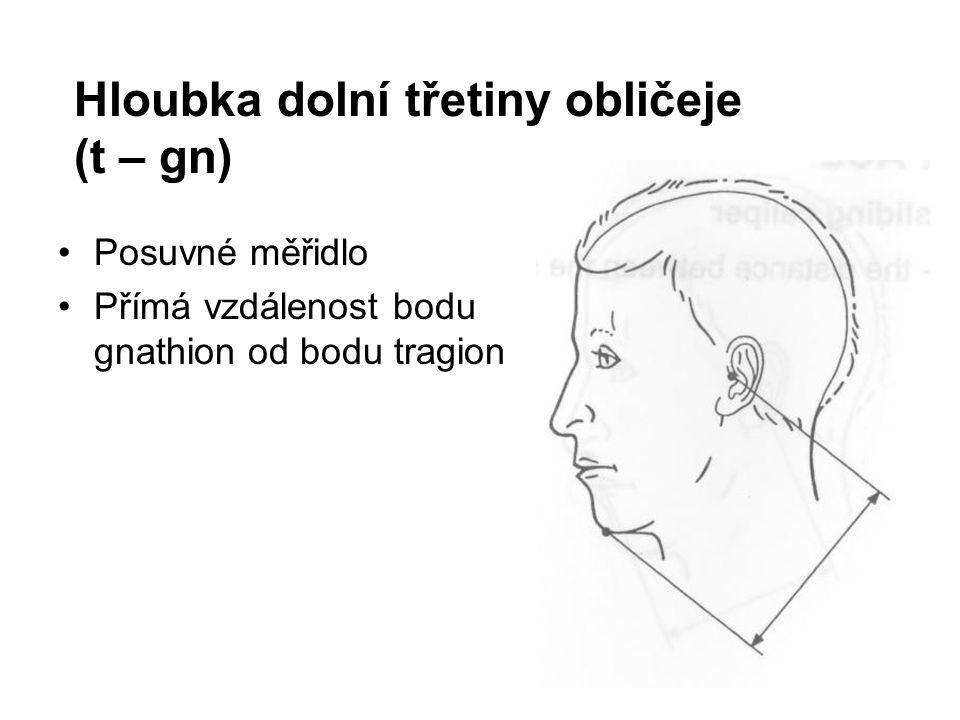 Hloubka dolní třetiny obličeje (t – gn) Posuvné měřidlo Přímá vzdálenost bodu gnathion od bodu tragion