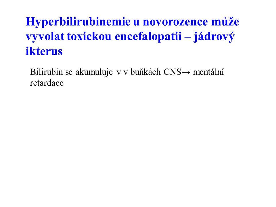 Hyperbilirubinemie u novorozence může vyvolat toxickou encefalopatii – jádrový ikterus Bilirubin se akumuluje v v buňkách CNS→ mentální retardace