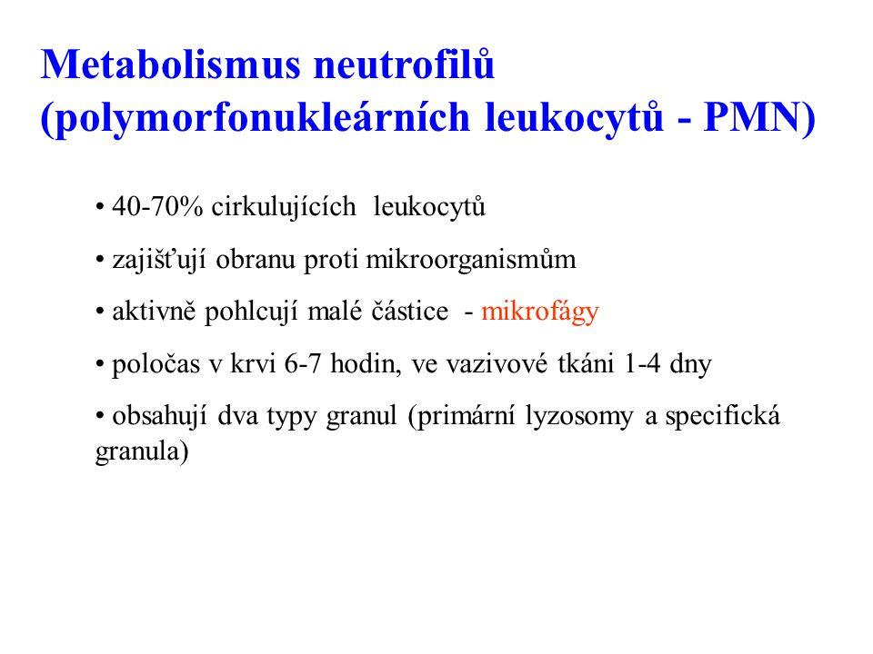 Metabolismus neutrofilů (polymorfonukleárních leukocytů - PMN) 40-70% cirkulujících leukocytů zajišťují obranu proti mikroorganismům aktivně pohlcují malé částice - mikrofágy poločas v krvi 6-7 hodin, ve vazivové tkáni 1-4 dny obsahují dva typy granul (primární lyzosomy a specifická granula)