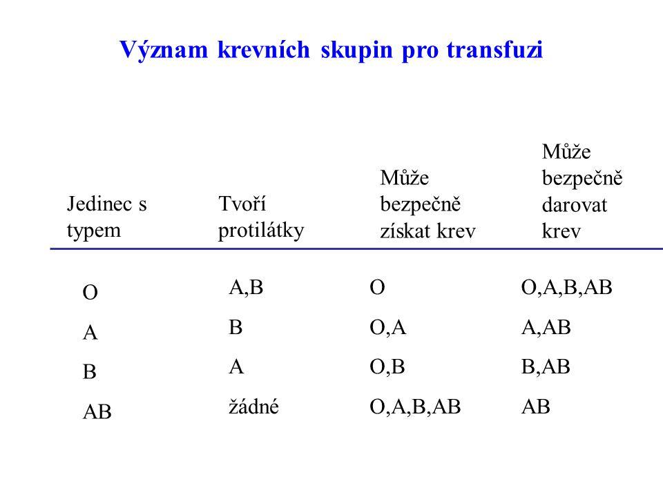 Může bezpečně darovat krev Jedinec s typem Tvoří protilátky Může bezpečně získat krev O A B AB A,B B A žádné O O,A O,B O,A,B,AB A,AB B,AB AB Význam krevních skupin pro transfuzi