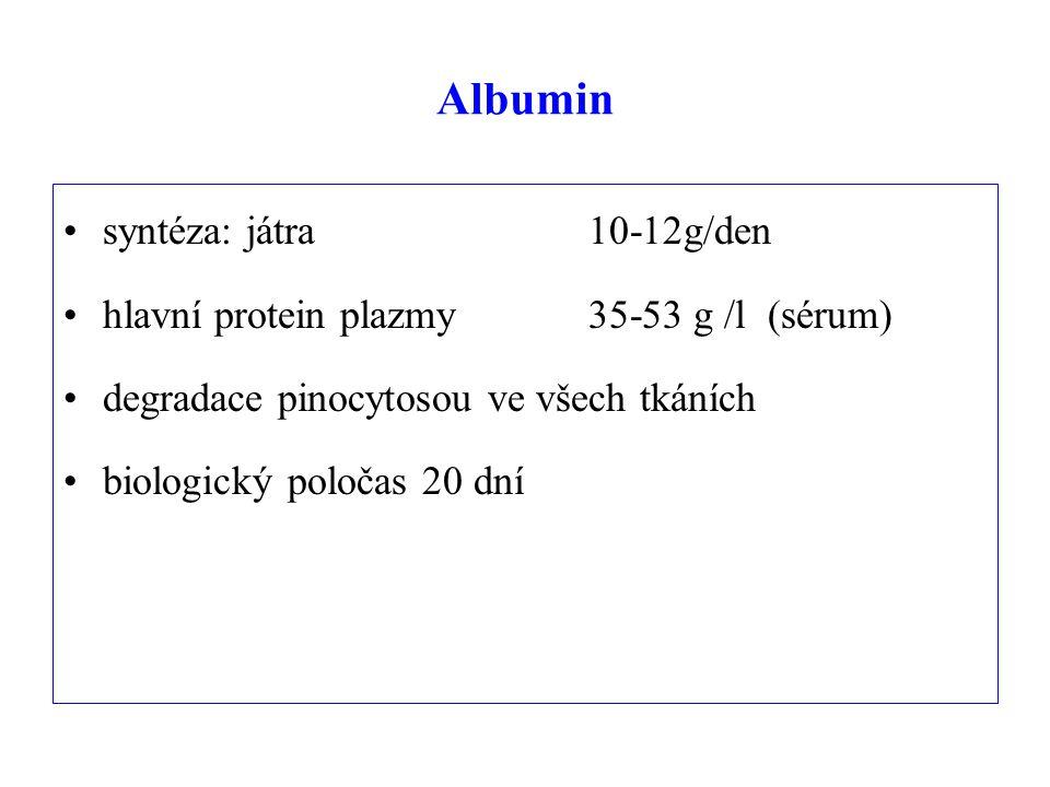 Albumin syntéza: játra 10-12g/den hlavní protein plazmy 35-53 g /l (sérum) degradace pinocytosou ve všech tkáních biologický poločas 20 dní