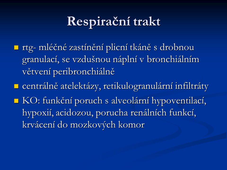 Respirační trakt rtg- mléčné zastínění plicní tkáně s drobnou granulací, se vzdušnou náplní v bronchiálním větvení peribronchiálně rtg- mléčné zastíně