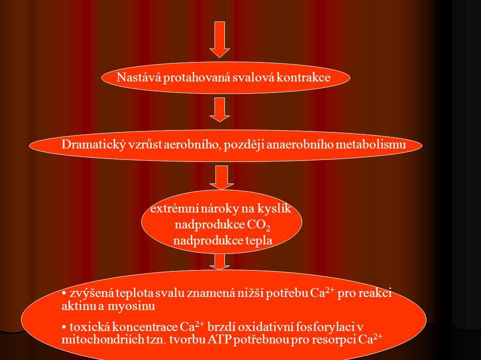 Nastává protahovaná svalová kontrakce Dramatický vzrůst aerobního, později anaerobního metabolismu extrémní nároky na kyslík nadprodukce CO 2 nadprodu