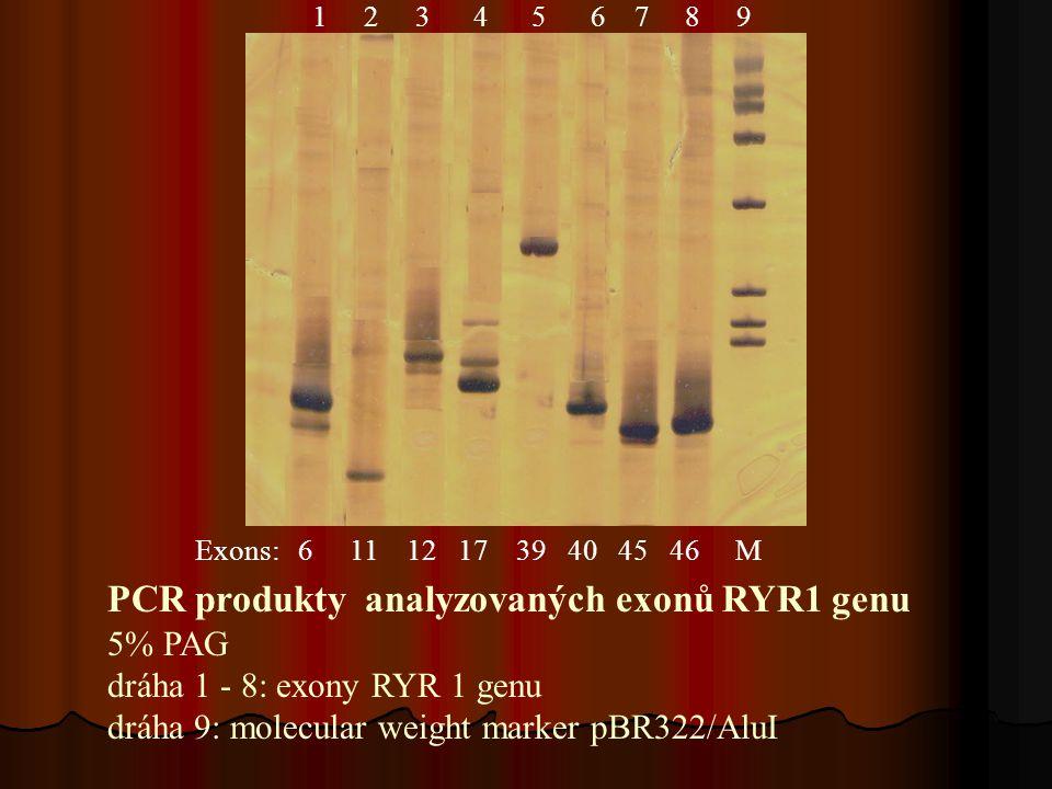 PCR produkty analyzovaných exonů RYR1 genu 5% PAG dráha 1 - 8: exony RYR 1 genu dráha 9: molecular weight marker pBR322/AluI Exons: 6 11 12 17 39 40 45 46 M 1 2 3 4 5 6 7 8 9