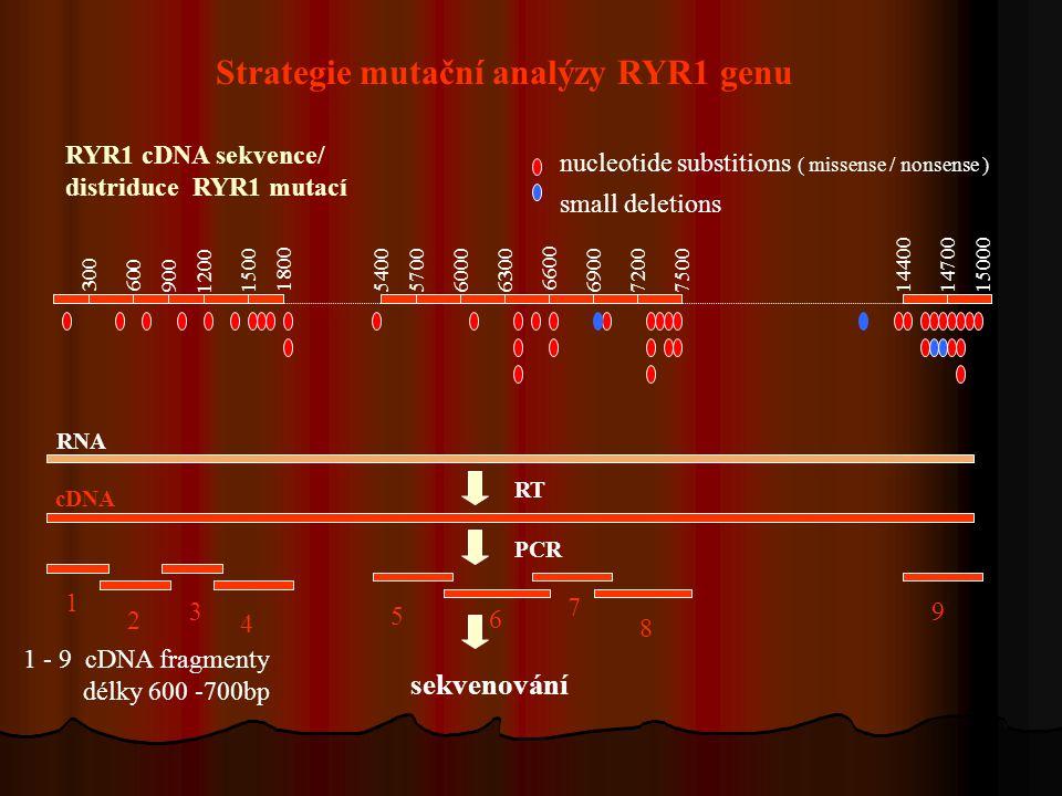 Strategie mutační analýzy RYR1 genu RNA cDNA RT PCR sekvenování 1 2 3 4 5 6 7 8 9 1 - 9 cDNA fragmenty délky 600 -700bp RYR1 cDNA sekvence/ distriduce RYR1 mutací nucleotide substitions ( missense / nonsense ) small deletions 300 1440014700150005400570060006300 6600 690072007500 600 9001500 1200 1800