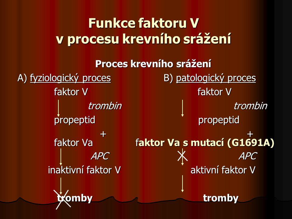 Funkce faktoru V v procesu krevního srážení Proces krevního srážení A) fyziologický procesB) patologický proces faktor V faktor V faktor V faktor V trombin trombin trombin trombin propeptid propeptid propeptid propeptid + + + + faktor Va faktor Va s mutací (G1691A) faktor Va faktor Va s mutací (G1691A) APC APC APC APC inaktivní faktor V aktivní faktor V inaktivní faktor V aktivní faktor V tromby tromby tromby tromby
