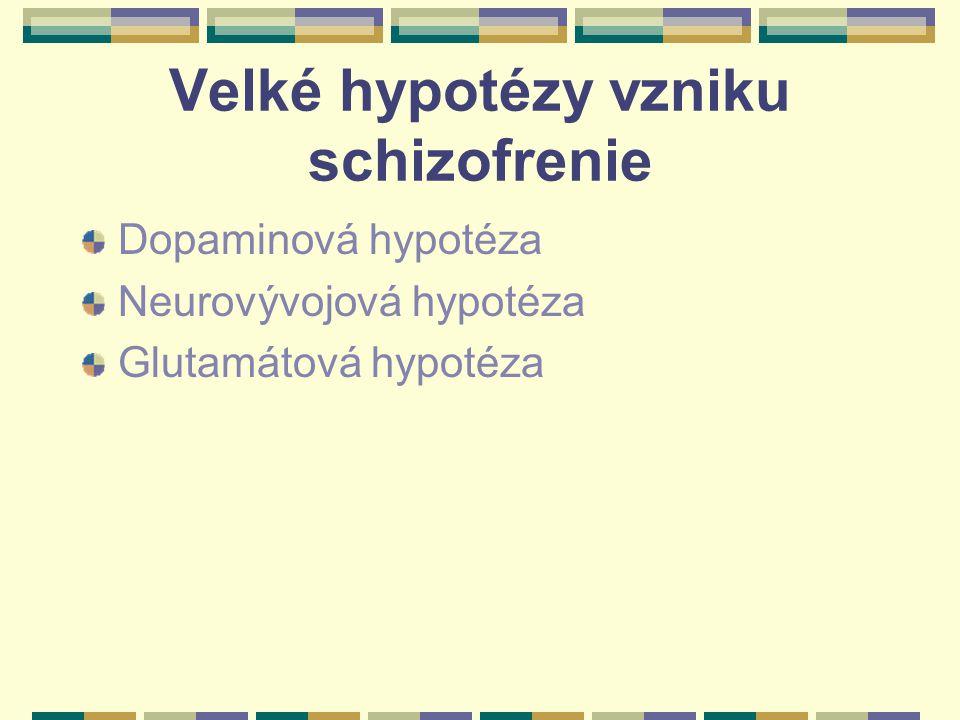 Velké hypotézy vzniku schizofrenie Dopaminová hypotéza Neurovývojová hypotéza Glutamátová hypotéza