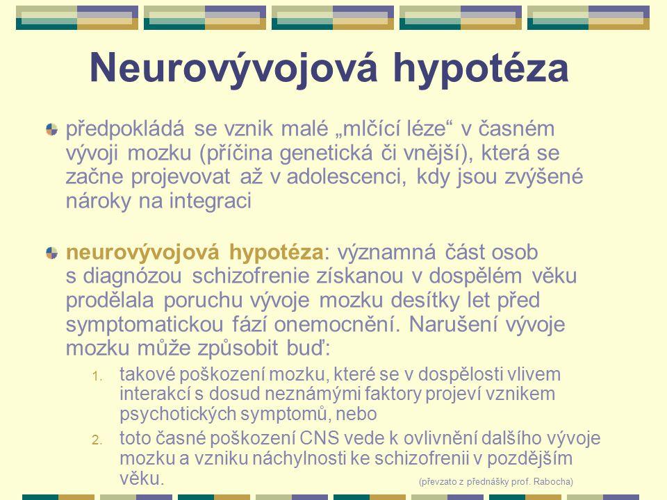 """Neurovývojová hypotéza předpokládá se vznik malé """"mlčící léze"""" v časném vývoji mozku (příčina genetická či vnější), která se začne projevovat až v ado"""