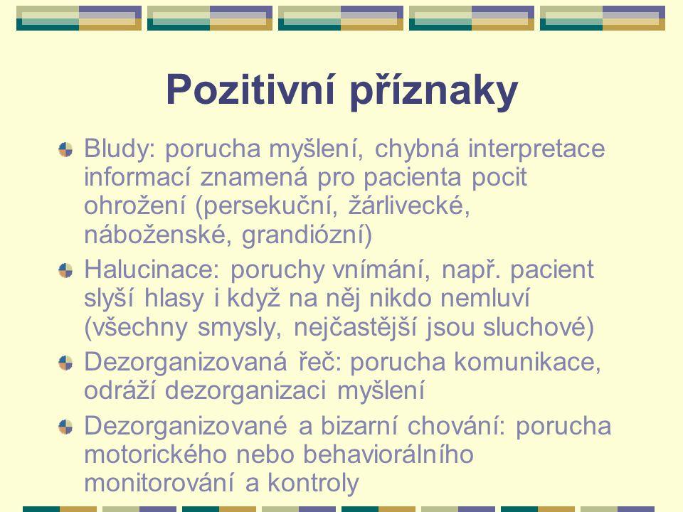 Pozitivní příznaky Bludy: porucha myšlení, chybná interpretace informací znamená pro pacienta pocit ohrožení (persekuční, žárlivecké, náboženské, gran