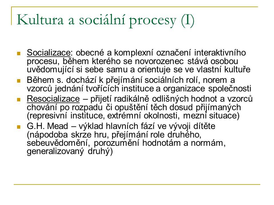 Kultura a sociální procesy (I) Socializace: obecné a komplexní označení interaktivního procesu, během kterého se novorozenec stává osobou uvědomující si sebe samu a orientuje se ve vlastní kultuře Během s.