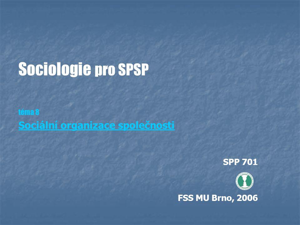 Sociologie pro SPSP téma 8 Sociální organizace společnosti SPP 701 FSS MU Brno, 2006