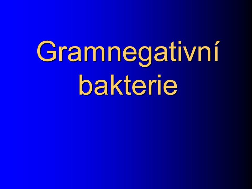 Gramnegativní bakterie