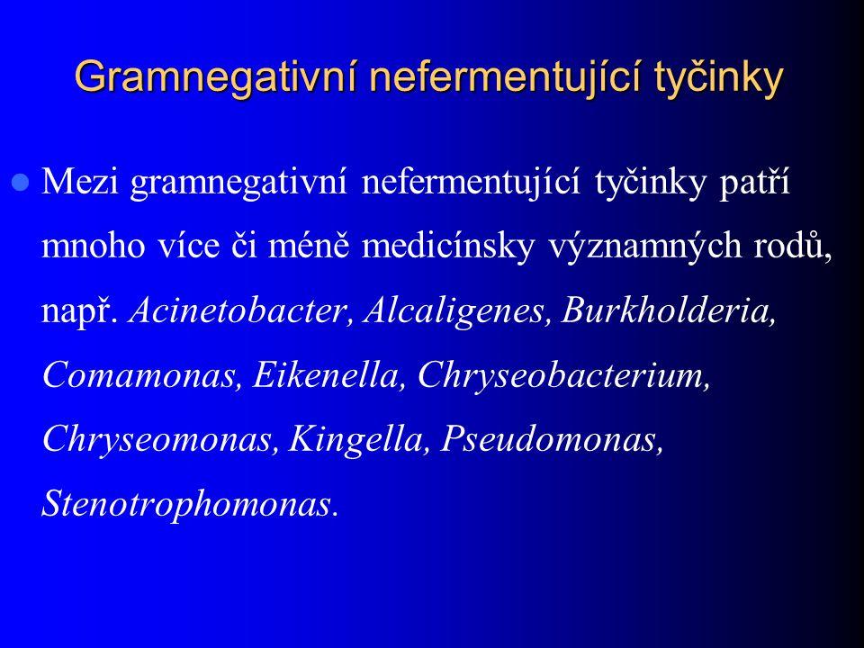 Gramnegativní nefermentující tyčinky Mezi gramnegativní nefermentující tyčinky patří mnoho více či méně medicínsky významných rodů, např.