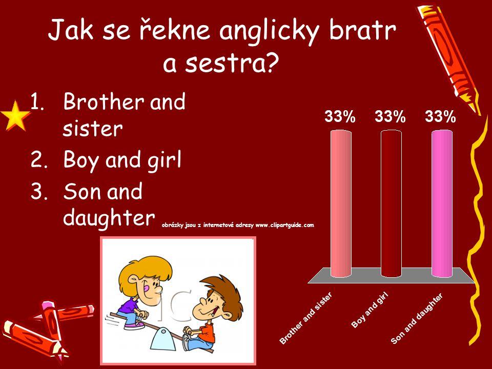 Jak se řekne anglicky bratr a sestra? 1.Brother and sister 2.Boy and girl 3.Son and daughter obrázky jsou z internetové adresy www.clipartguide.com