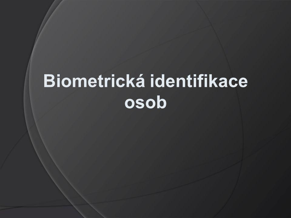 Biometrická identifikace osob