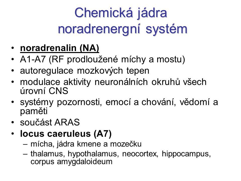 Chemická jádra noradrenergní systém noradrenalin (NA) A1-A7 (RF prodloužené míchy a mostu) autoregulace mozkových tepen modulace aktivity neuronálních okruhů všech úrovní CNS systémy pozornosti, emocí a chování, vědomí a paměti součást ARAS locus caeruleus (A7) –mícha, jádra kmene a mozečku –thalamus, hypothalamus, neocortex, hippocampus, corpus amygdaloideum