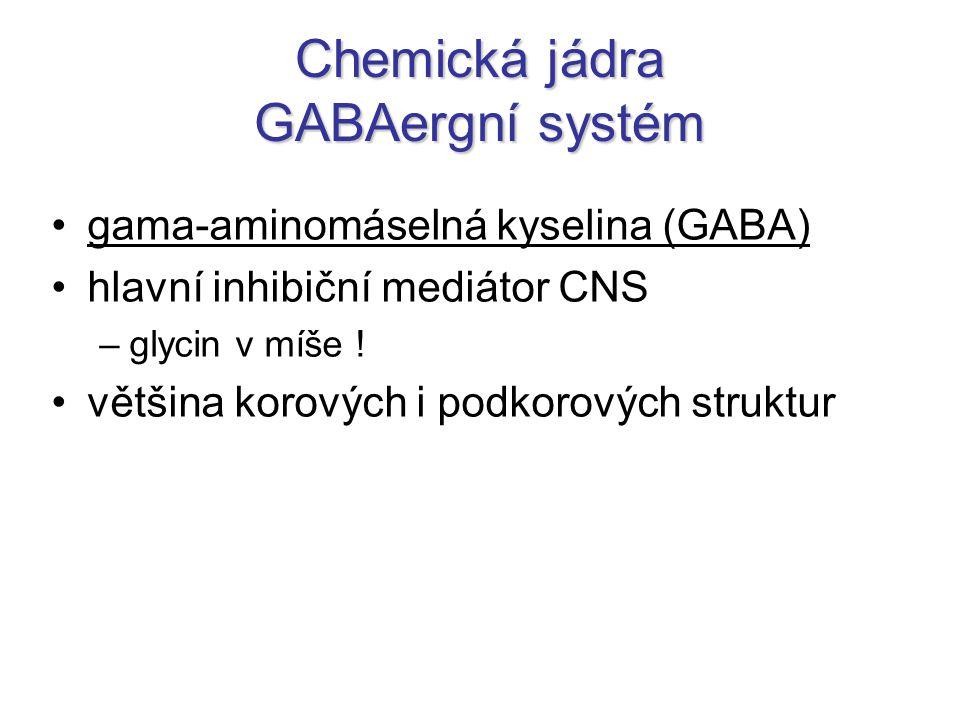 Chemická jádra GABAergní systém gama-aminomáselná kyselina (GABA) hlavní inhibiční mediátor CNS –glycin v míše .