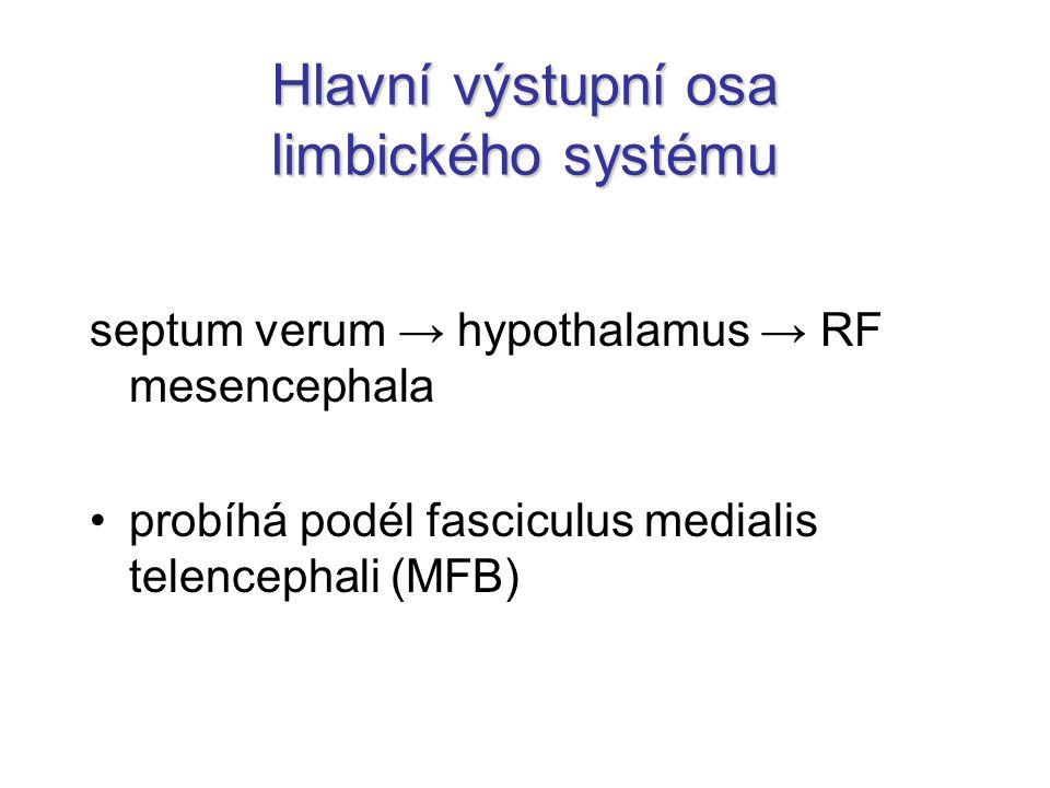 Hlavní výstupní osa limbického systému septum verum → hypothalamus → RF mesencephala probíhá podél fasciculus medialis telencephali (MFB)