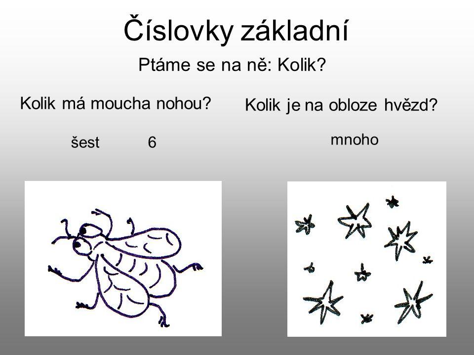 Číslovky základní Ptáme se na ně: Kolik? Kolik má moucha nohou? Kolik je na obloze hvězd? šest 6 mnoho