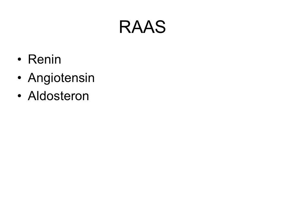 RAAS Renin Angiotensin Aldosteron
