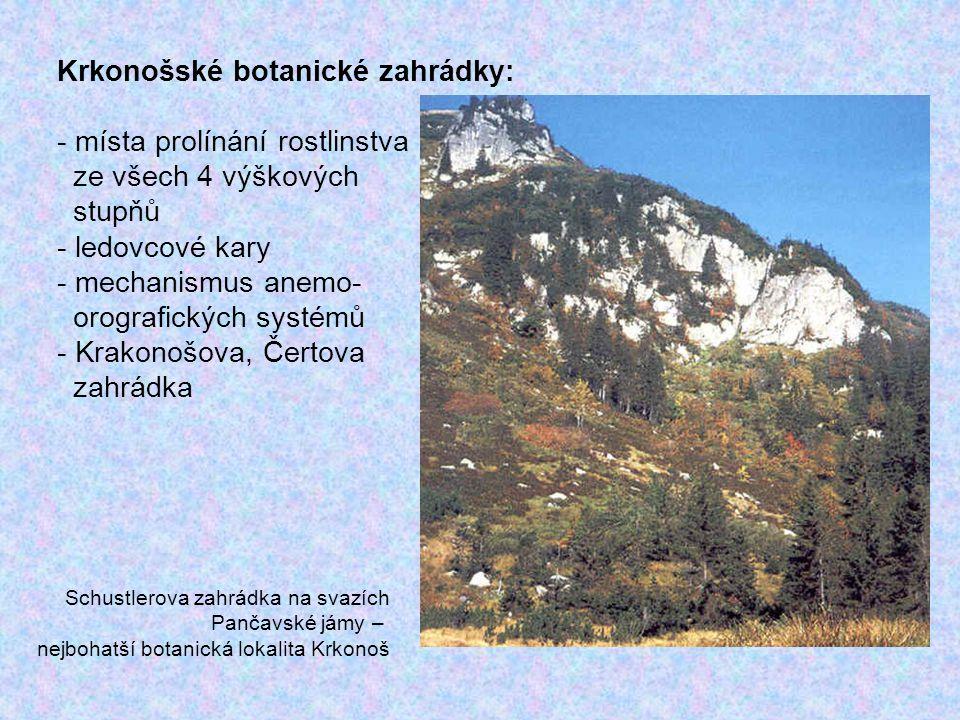 Krkonošské botanické zahrádky: - místa prolínání rostlinstva ze všech 4 výškových stupňů - ledovcové kary - mechanismus anemo- orografických systémů -