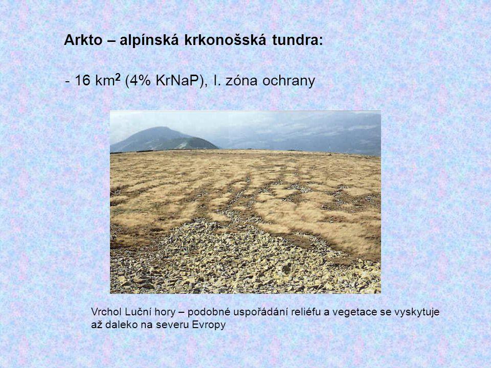 Arkto – alpínská krkonošská tundra: - 16 km 2 (4% KrNaP), I. zóna ochrany Vrchol Luční hory – podobné uspořádání reliéfu a vegetace se vyskytuje až da