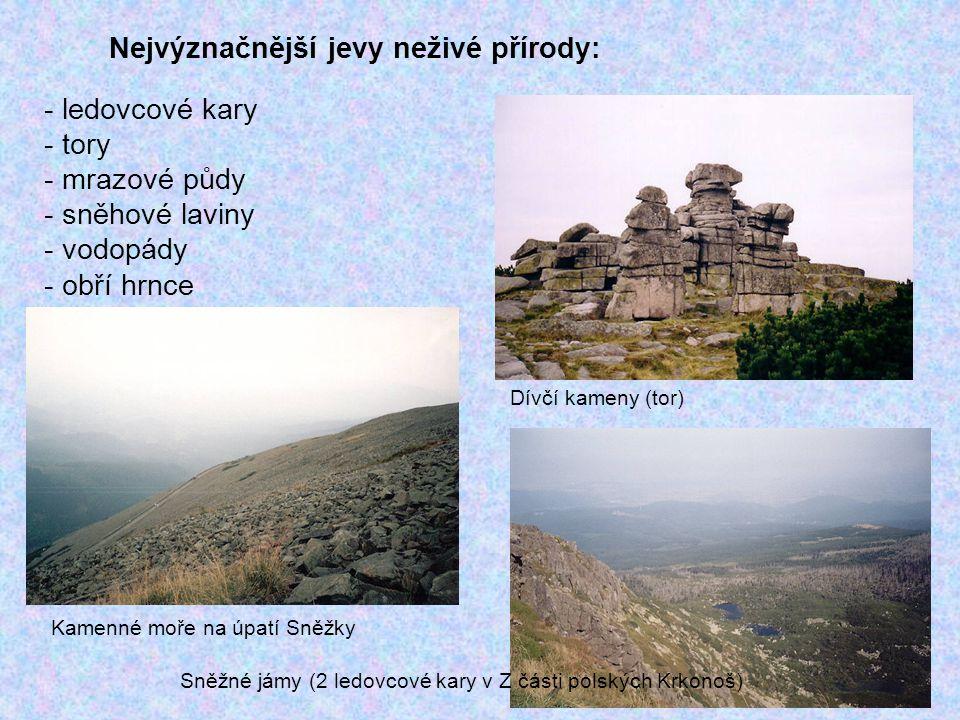 Nejvýznačnější jevy neživé přírody: - ledovcové kary - tory - mrazové půdy - sněhové laviny - vodopády - obří hrnce Dívčí kameny (tor) Kamenné moře na