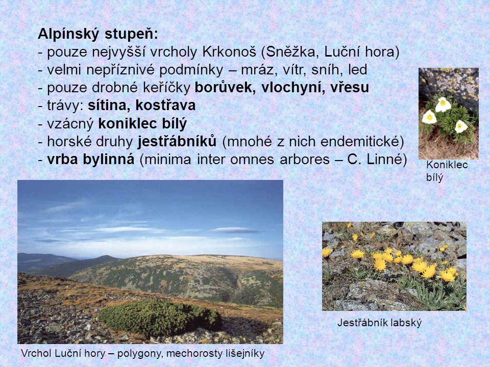 České Švýcarsko (2000): Pravčický důl Pravčická brána - s ídlo Krásná Lípa, 79 km2, na území CHKO Labské pískovce - v podloží křídové pískovce, skalní města, kaňony, věže, mikrotvary na skalních stěnách - při severní hranici Německý NP Saské Švýcarsko