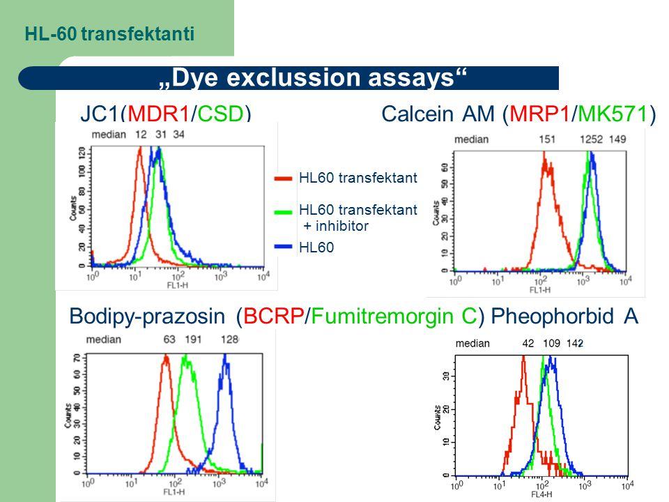 """HL-60 transfektanti JC1(MDR1/CSD) Calcein AM (MRP1/MK571) Bodipy-prazosin (BCRP/Fumitremorgin C) Pheophorbid A """"Dye exclussion assays"""" 2 HL60 transfek"""