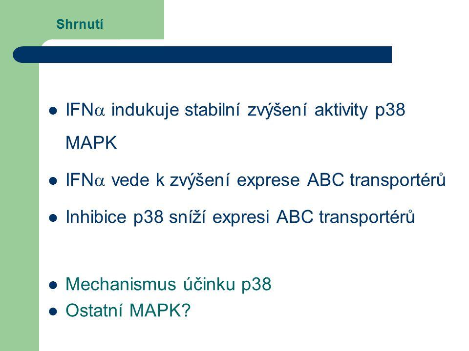 Shrnutí IFN  indukuje stabilní zvýšení aktivity p38 MAPK IFN  vede k zvýšení exprese ABC transportérů Inhibice p38 sníží expresi ABC transportérů Mechanismus účinku p38 Ostatní MAPK?