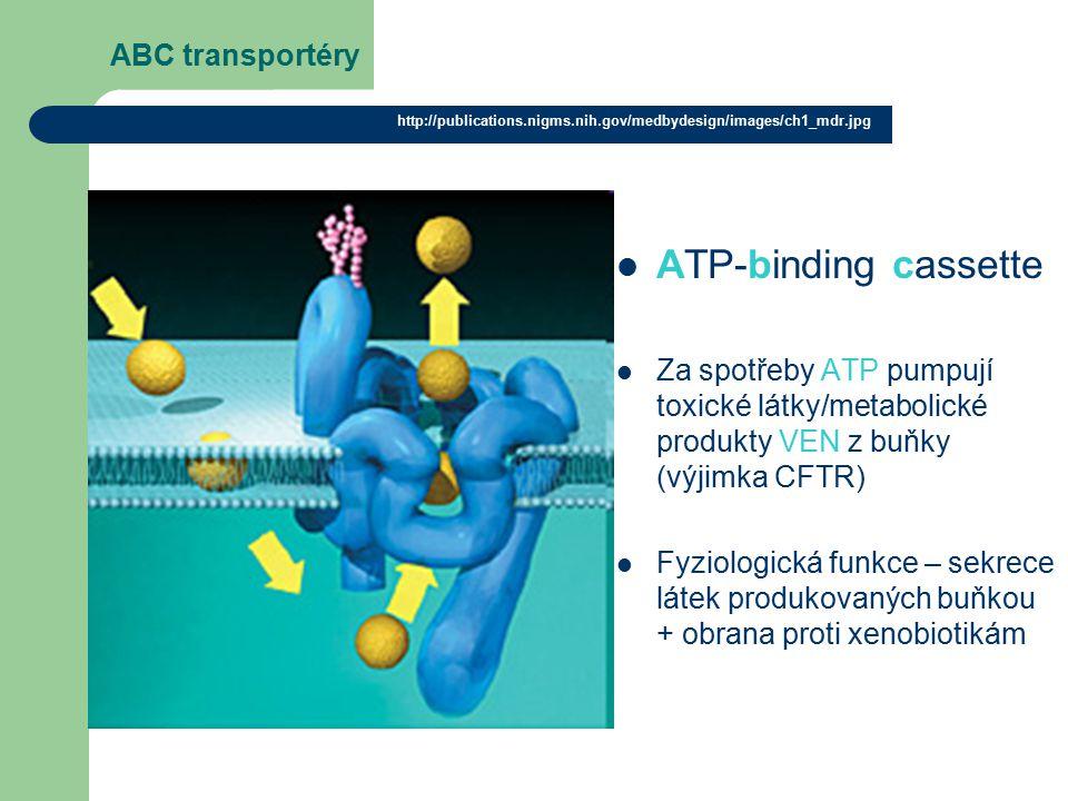 ABC transportéry ATP-binding cassette Za spotřeby ATP pumpují toxické látky/metabolické produkty VEN z buňky (výjimka CFTR) Fyziologická funkce – sekrece látek produkovaných buňkou + obrana proti xenobiotikám http://publications.nigms.nih.gov/medbydesign/images/ch1_mdr.jpg