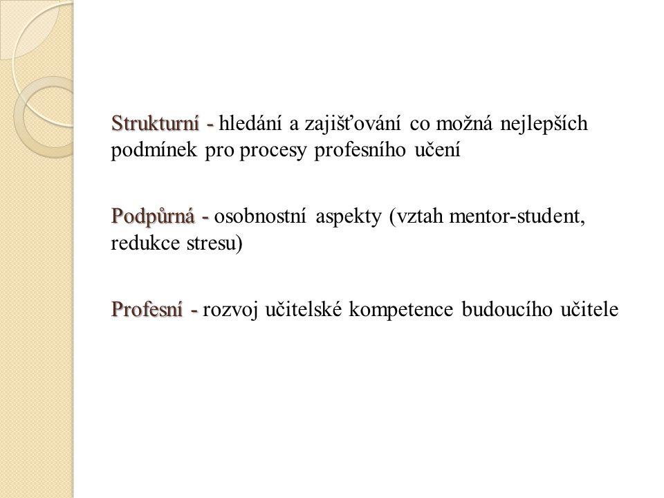 Strukturní - Strukturní - hledání a zajišťování co možná nejlepších podmínek pro procesy profesního učení Podpůrná - Podpůrná - osobnostní aspekty (vz
