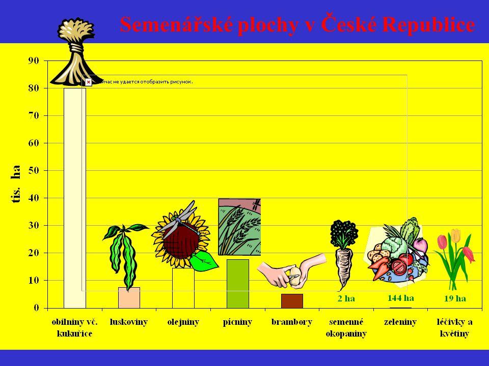 Semenářské plochy jetelovin, produkce a export v roce 2002