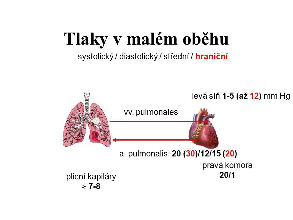 Tlaky v malém oběhu a. pulmonalis: 20 (30)/12/15 (20) vv. pulmonales plicní kapiláry  7-8 levá síň 1-5 (až 12) mm Hg pravá komora 20/1 systolický / d