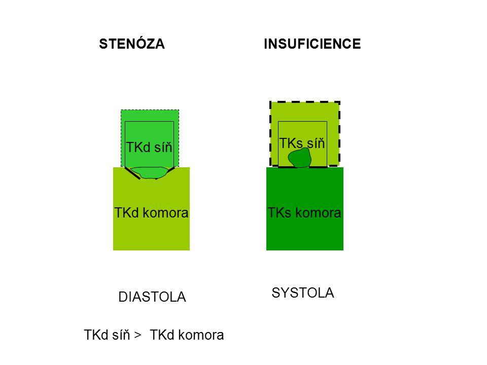 DIASTOLA SYSTOLA TKd síň TKd komora TKs síň TKs komora STENÓZAINSUFICIENCE TKd síň >TKd komora