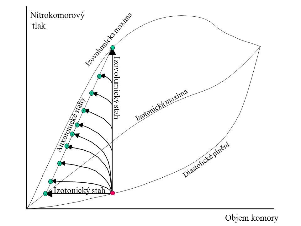 Objem komory Nitrokomorový tlak Diastolické plnění Auxotonické stahy Izotonický stah Izovolumický stah Izotonická maxima Izovolumická maxima