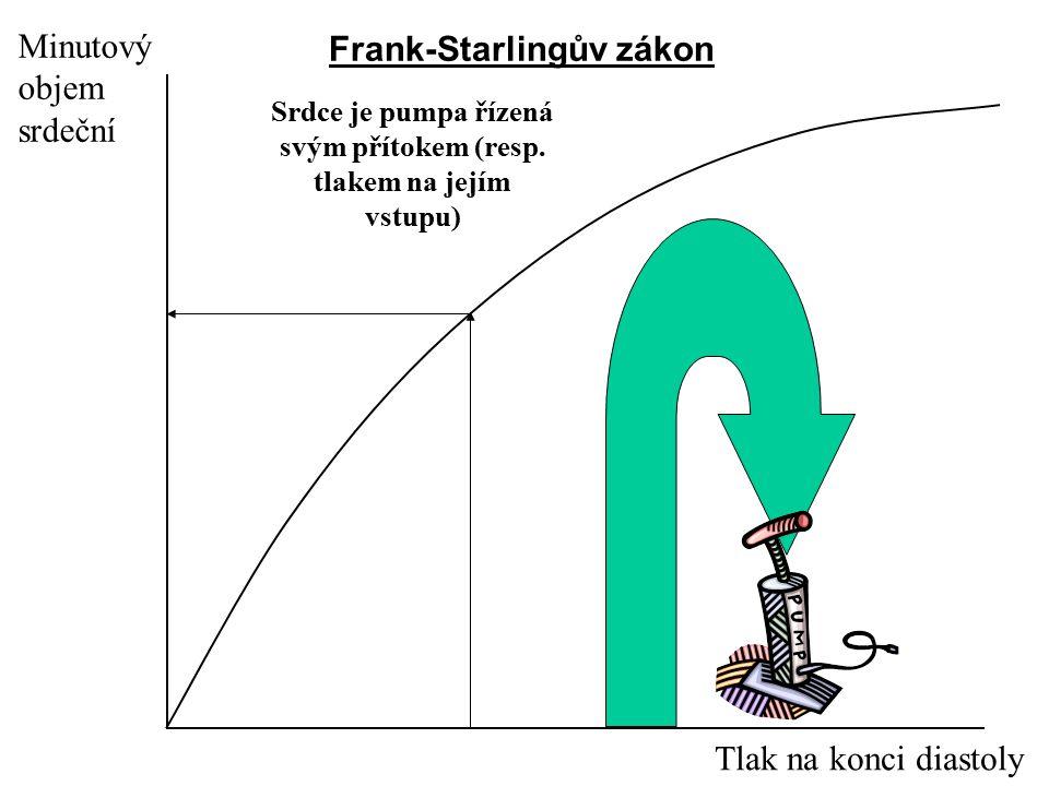 Minutový objem srdeční Tlak na konci diastoly Srdce je pumpa řízená svým přítokem (resp. tlakem na jejím vstupu) Frank-Starlingův zákon