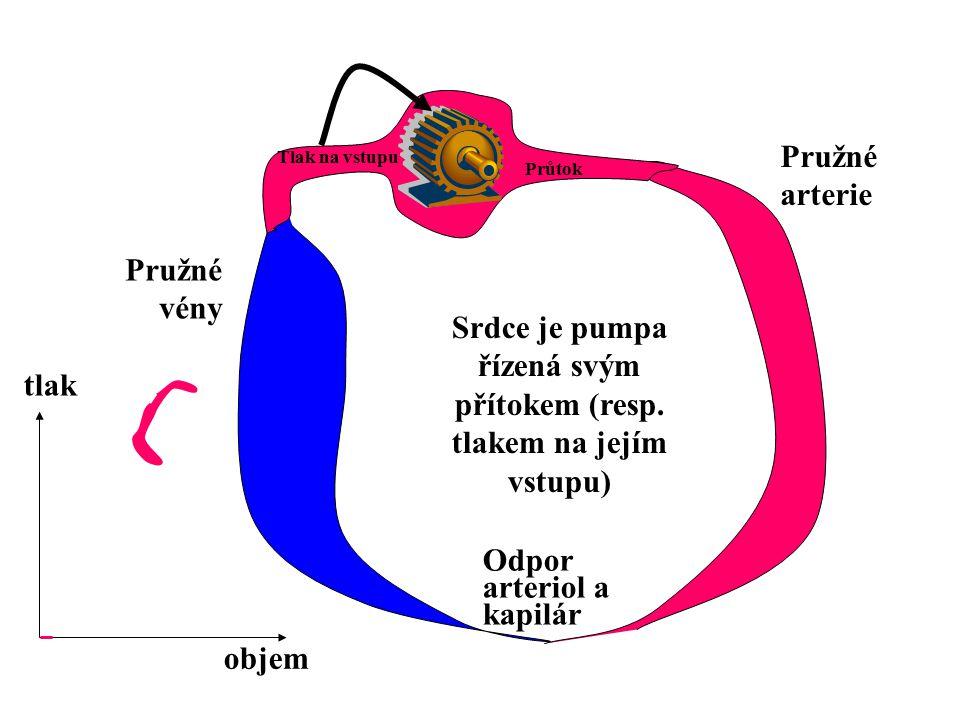 Srdce je pumpa řízená svým přítokem (resp. tlakem na jejím vstupu) Tlak na vstupu Průtok Odpor arteriol a kapilár Pružné arterie Pružné vény tlak obje