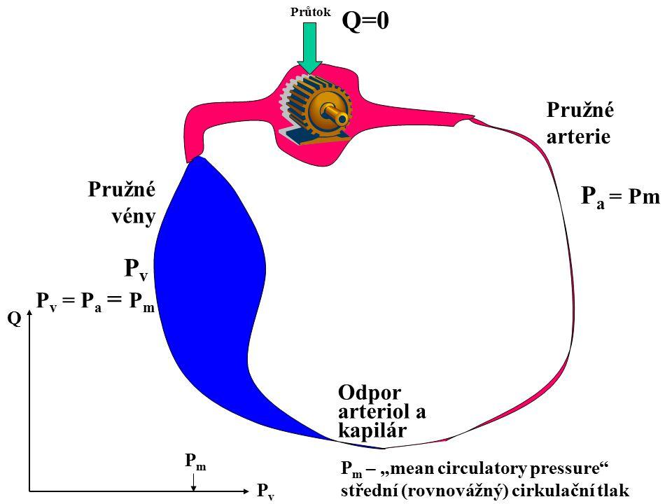 """Průtok Odpor arteriol a kapilár Pružné arterie Pružné vény PvPv P a = Pm Q=0 P v = P a = P m PvPv Q PmPm P m – """"mean circulatory pressure"""" střední (ro"""