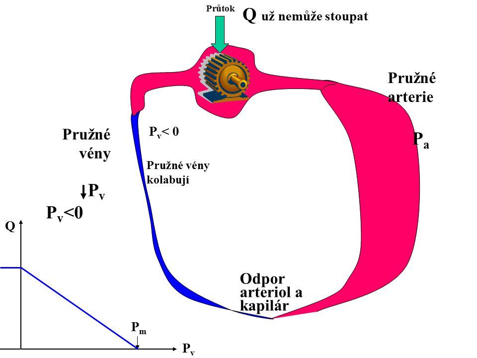 Průtok Odpor arteriol a kapilár Pružné arterie Pružné vény PvPv PaPa P v <0 PvPv Q PmPm Q už nemůže stoupat P v < 0 Pružné vény kolabují