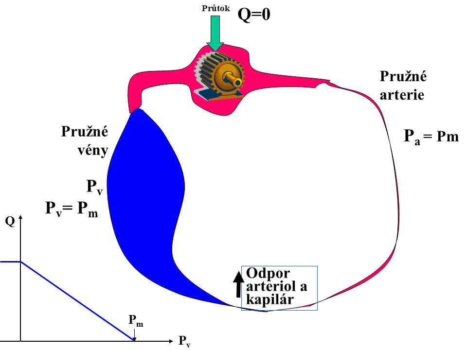 Průtok Odpor arteriol a kapilár Pružné arterie Pružné vény PvPv Q=0 P v = P m PvPv Q PmPm P a = Pm
