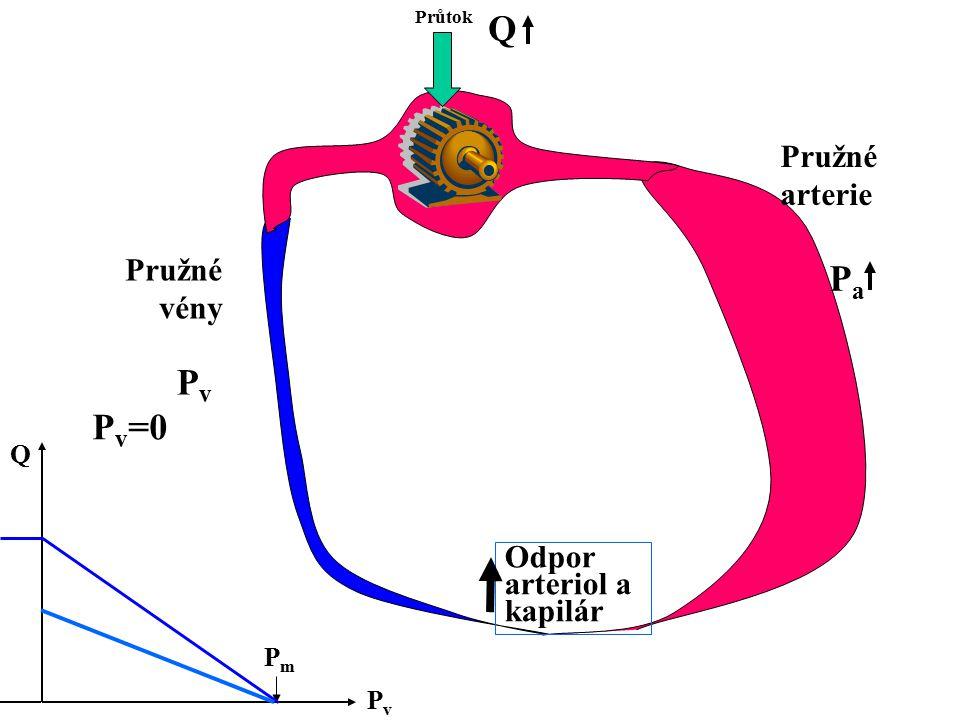 Průtok Odpor arteriol a kapilár Pružné arterie Pružné vény PvPv PaPa Q PvPv Q PmPm P v =0
