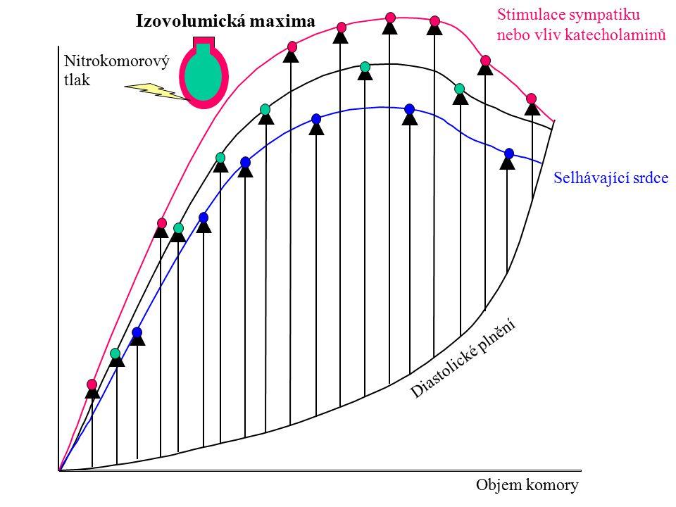 Nitrokomorový tlak Objem komory Izotonická maxima Diastolické plnění Izotonická maxima