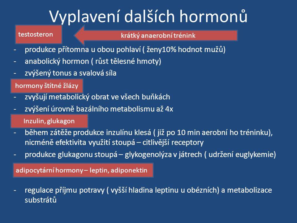 Vyplavení dalších hormonů -produkce přítomna u obou pohlaví ( ženy10% hodnot mužů) -anabolický hormon ( růst tělesné hmoty) -zvýšený tonus a svalová síla -zvyšují metabolický obrat ve všech buňkách -zvýšení úrovně bazálního metabolismu až 4x -během zátěže produkce inzulínu klesá ( již po 10 min aerobní ho tréninku), nicméně efektivita využití stoupá – citlivější receptory -produkce glukagonu stoupá – glykogenolýza v játrech ( udržení euglykemie) -regulace příjmu potravy ( vyšší hladina leptinu u obézních) a metabolizace substrátů testosteron krátký anaerobní trénink hormony štítné žlázy Inzulin, glukagon adipocytární hormony – leptin, adiponektin