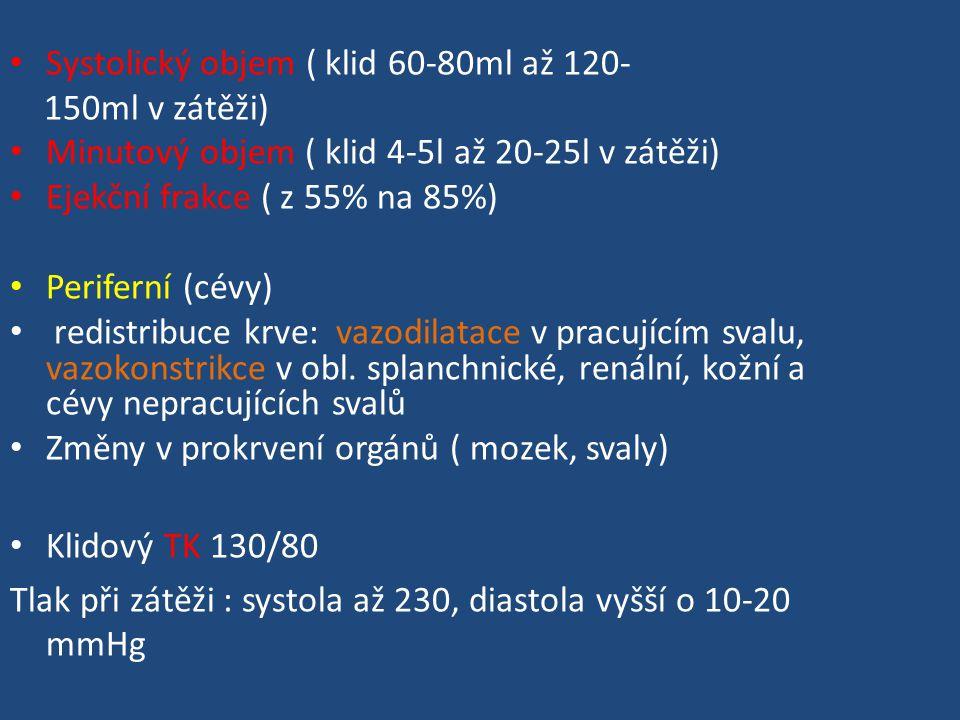 Systolický objem ( klid 60-80ml až 120- 150ml v zátěži) Minutový objem ( klid 4-5l až 20-25l v zátěži) Ejekční frakce ( z 55% na 85%) Periferní (cévy) redistribuce krve: vazodilatace v pracujícím svalu, vazokonstrikce v obl.