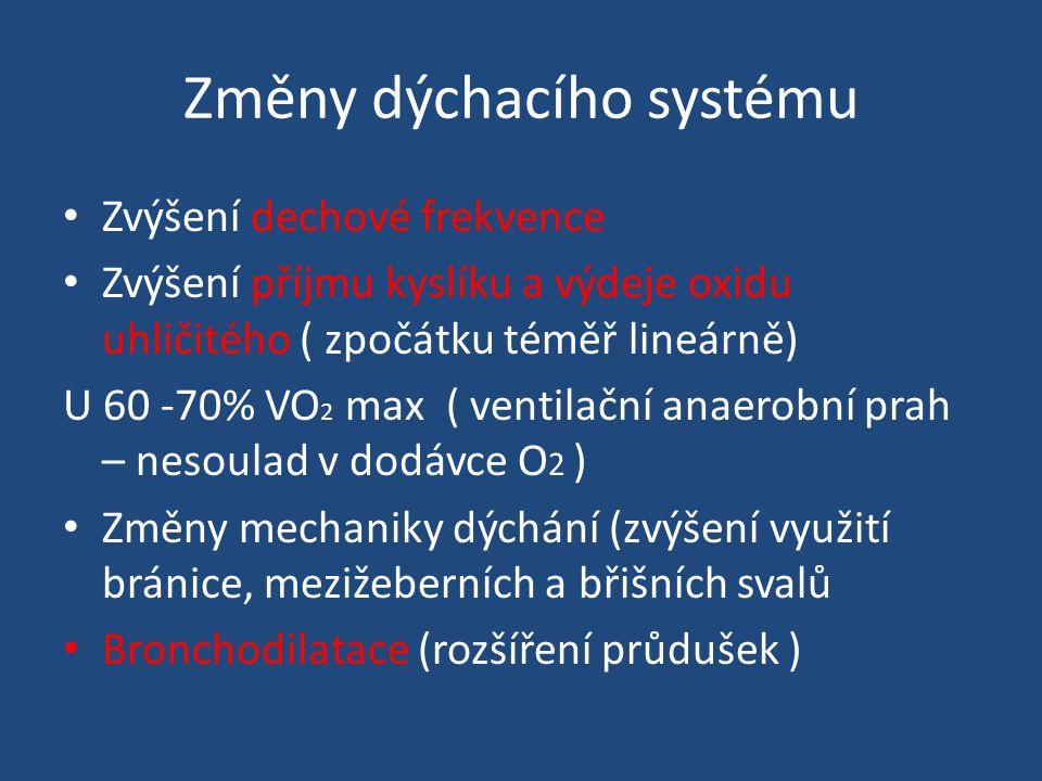 Změny dýchacího systému Zvýšení dechové frekvence Zvýšení příjmu kyslíku a výdeje oxidu uhličitého ( zpočátku téměř lineárně) U 60 -70% VO 2 max ( ventilační anaerobní prah – nesoulad v dodávce O 2 ) Změny mechaniky dýchání (zvýšení využití bránice, mezižeberních a břišních svalů Bronchodilatace (rozšíření průdušek )