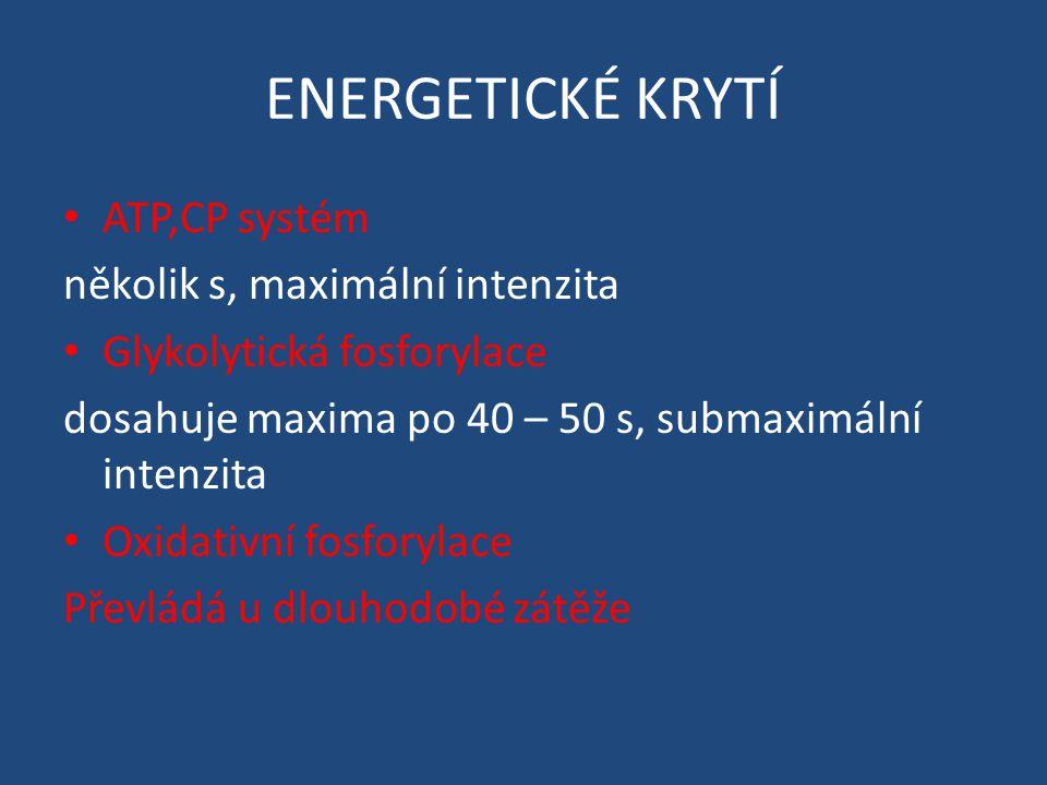 ENERGETICKÉ KRYTÍ ATP,CP systém několik s, maximální intenzita Glykolytická fosforylace dosahuje maxima po 40 – 50 s, submaximální intenzita Oxidativní fosforylace Převládá u dlouhodobé zátěže