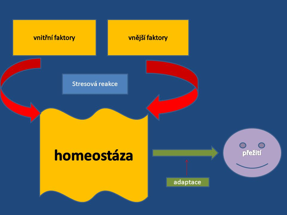 Mezi fyziologickou adaptací ( snad specifickou na určitý typ podnětu ) a stresem ( reakce odolnosti organismu ) nelze vést ostrou hranici Není jasné zda nespecifická poplachová reakce ( typická pro stres ) je nutnou podmínkou specifické adaptační odpovědi Přizpůsobování organismu na opakovanou tělesnou aktivitu probíhá při zvýšeném používání orgánů k jeho hypertrofii / opak atrofie /