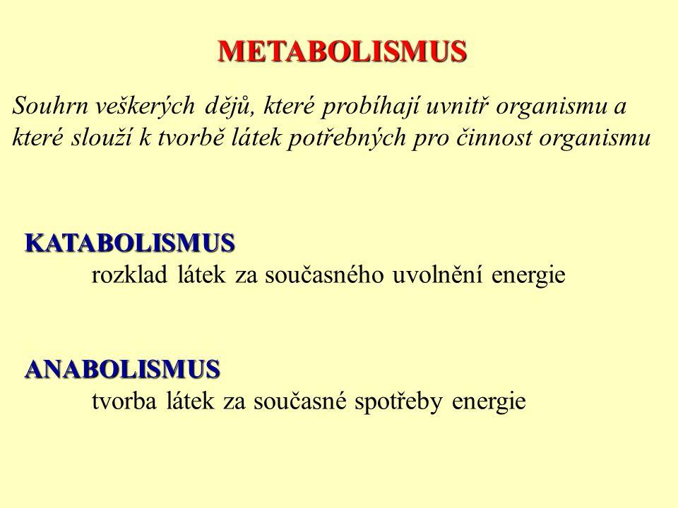 METABOLISMUS Souhrn veškerých dějů, které probíhají uvnitř organismu a které slouží k tvorbě látek potřebných pro činnost organismu KATABOLISMUS rozkl